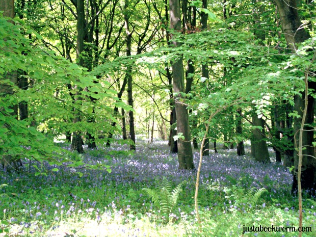 bookworm_bluebells1