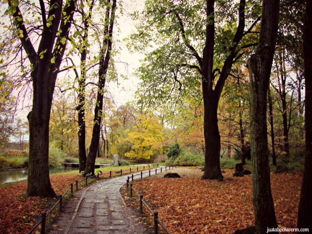 bookworm_autumn7