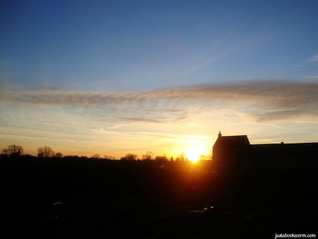 bookworm_sunset2