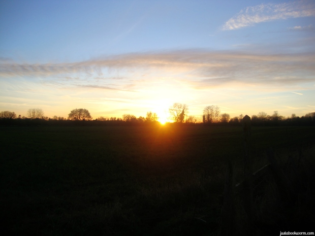 bookworm_sunset3