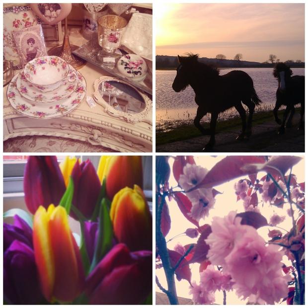 bookworm_april1