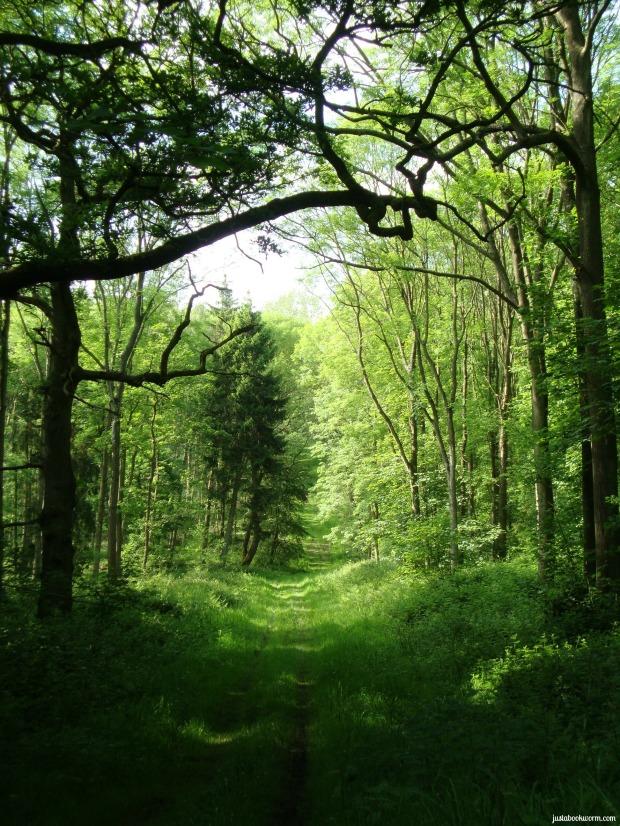 bookworm_woods7